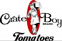 Crate Boy Tomatoes