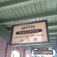 Brandy Saloon Sign